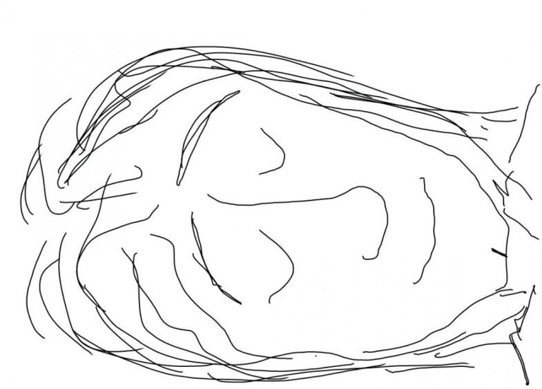 Endormi, dessin de Robert Fred, Genève, 2013