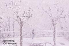 Quai Capo d\'Istria, Genève. Un homme dans la neige. Poème à l\'hiver.