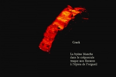 Buche éclairée par un lampadaire, Ovronnaz, Valais. Poème sur la drogue.